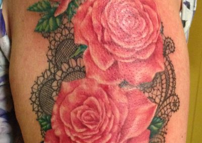 Pink roses and lacewm