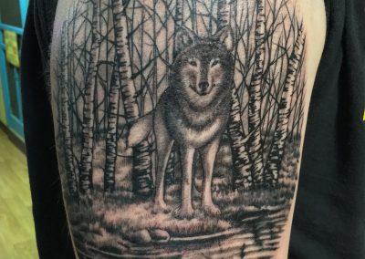 Wolf in woodswm