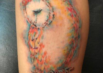 Patty's Owl