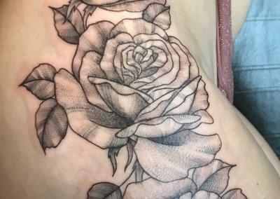 Kristys Roses