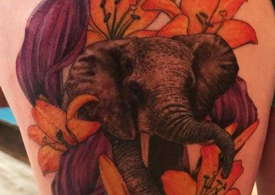 Jordyn's Elephant